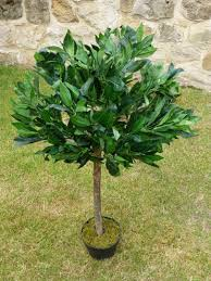 Bay Tree Topiary Artificial Plants 3ft 4ft 5ft Buxus Bay Trees Indoor Office