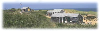 Cottages To Rent Dog Friendly by Welcome To Cook U0027s Cottages On The Beach In Wellfleet On Cape Cod