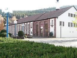 Polarion Bad Liebenzell Bad Liebenzell Stadträte Stellen Investitionen Infrage Bad