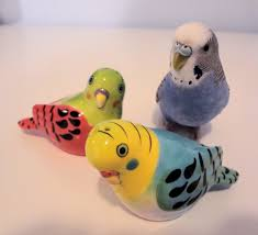 budgie toys