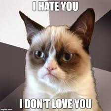 Grumpy Cat Meme Love - sorry no love from grumpy cat imgflip