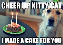 Funny Cheer Up Meme - cheer up kitty cat i made a cake for you sad birthday dog