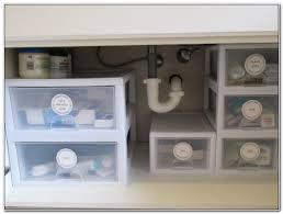 Bathroom Cabinet Organizer Under Sink by Organize Under Bathroom Sink Home Design Ideas And Pictures