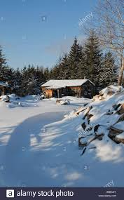 view of beautiful and impression nature wooden cottage woods in