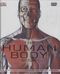 Essentials Of Human Anatomy And Physiology Book Online Books And Ebooks Anatomy U0026 Physiology Central Indiana Ivy