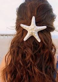starfish hair clip best starfish hair clip photos 2017 blue maize