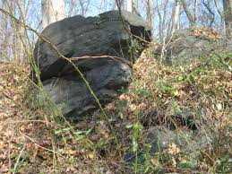 White Clay Creek State Park Map Outcrop Bd21 A Boulder Field At Brandywine Creek State Park The