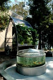 can you feed your family with aquaponics peak prosperity