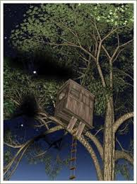 Magic Treehouse - the magic tree house series brilliant books for 7 9 year olds