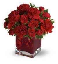 flower delivery baltimore flowers baltimore discounted flower delivery baltimore