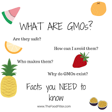 What Are Gmos Facts You Need To Know About Your Food The Food