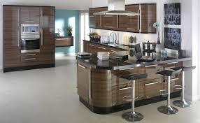 High Gloss Black Kitchen Cabinets Kitchen Cabinet Ideas Zikraskitchen Com