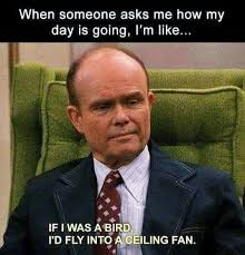 Red Forman Meme - red forman bird my favorite daily things