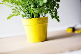 Small Flower Pot by Diy Emoji Flower Pot How Are You Feeling Today U2014 All For The Boys