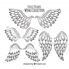 set of wings with great designs vector free