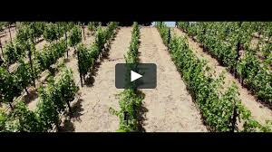 house family winery on vimeo