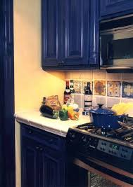 what color appliances with blue cabinets cabinet colors for appliances kitchen tiles design
