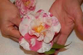 Preserve Flowers She Dips A Flower In This To Make The Cutest Diy Project I U0027m