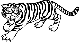 100 coloring pages of tiger tiger is doing ring training