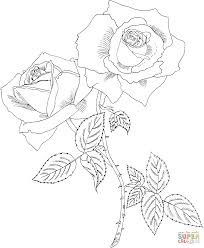 rose with thorns coloring page free printable coloring pages