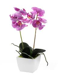 potted flowers artificial orchid pale pink silk potted flower plant in white