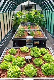 Hydroponics Vegetable Gardening by 456 Best Aquaponics Hydroponics Images On Pinterest