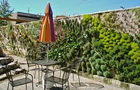 vertical gardens singer hill cafe vertical gardens in the beginning