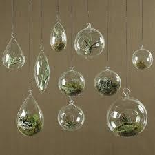 homart hanging bubble teardrop terrarium large areohome