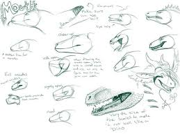 how to draw a dragon 11 steps
