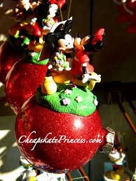 christmas at disney world would you spend up to 30 for a