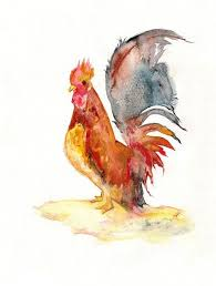 62 best roosters images on pinterest rooster decor rooster