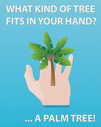 of tree fits in your