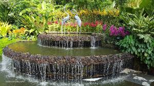 Botanical Gardens In Singapore by Singapore Botanic Gardens National Orchid Garden Kids U0027r U0027 Simple