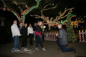 Christmas Lights At Houston Zoo by Zoo Lights Houston Texas Proposal Photographers Jessi Marri
