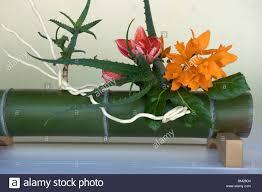 Japanese Flower Arranging Vases Ikebana Flower Arranging Stock Photos U0026 Ikebana Flower Arranging