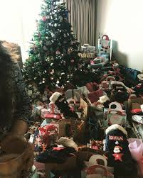 Salman Khan Home Interior Arpita Khan U0027s Extravagant Christmas Party Purple Velvet Project
