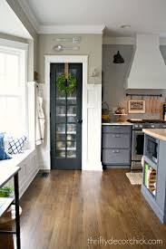 best ideas about painted pantry doors pinterest kitchen the surprising color every room needs painted pantry doorsglass doorkitchen