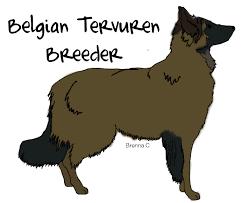 belgian sheepdog forum banner making forum breed immis xd showdog com forum