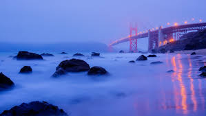 san francisco we are thankful for you photos huffpost