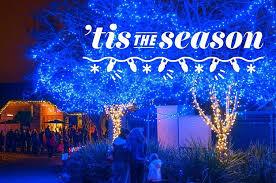 folsom zoo christmas lights 2017 things to do with kids in sacramento over winter break sacramento