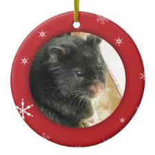 black hamster ornaments keepsake ornaments zazzle