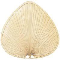 Ceiling Fan With Palm Leaf Blades by Fanimation Belleria 5 Blade Ceiling Fan U0026 Reviews Wayfair