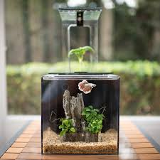 chic office desk aquarium unique design desktop fish office ideas