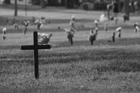 free images black and white airplane cross cemetery flowers