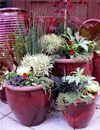 Ideas For Container Gardens Pinterest Container Garden Ideas Winter Container Gardens By