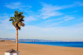 valencia nightlife guide malvarrosa beach valencia spain city guide tripkay