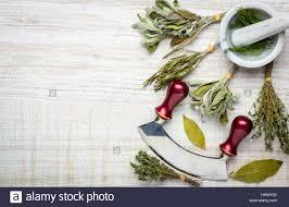 les herbes de cuisine herbes de cuisine et d un pilon et mortier avec herb mezzaluna du