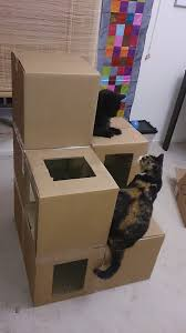 How To Make A Large Toy Chest by Best 25 Cardboard Cat House Ideas On Pinterest House Of Cat