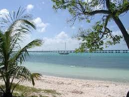 31 best port st joe beach florida images