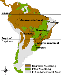 south america map rainforest presently altered regimes in south america highlighting the
